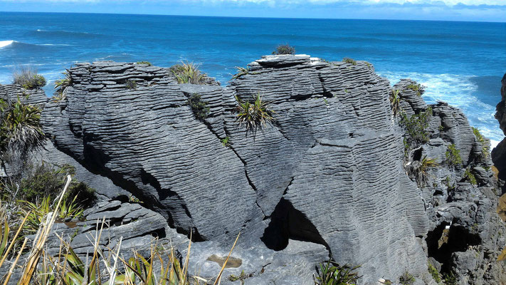 BLOWHOLE WALK PANCAKES ROCKS ILE DU SUD NZ