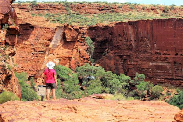 PAYSAGE SUR LE PLATEAU DE LA RANDO RIM WALK  A KINGS CANYON NP CENTRE ROUGE AUSTRALIE