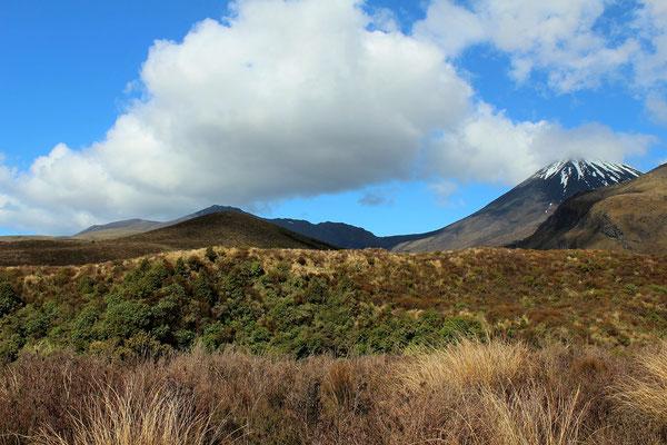 MONT NGAURUHOE DU SEIGNEUR DES ANNEAUX TONGARIRO ILE DU NORD NZ