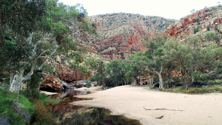 PAYSAGE DE ORMISTON GORGE DANS LE WEST MAC DONNELL NP PRES ALICE SPRINGS CENTRE ROUGE AUSTRALIE