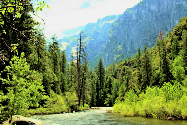 LA MERCED RIVER ET LA VALLEE GLACIERE DE YOSEMITE A YOSEMITE NATIONAL PARK CALIFORNIE