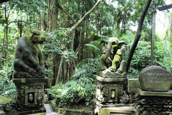 SACRED MONKEY FOREST SANCTUARY A UBUD BALI