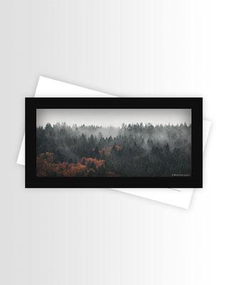 Schwarzwald Postkarte Fall