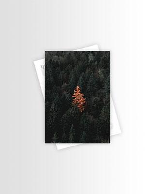 Schwarzwald Postkarte Be Unique