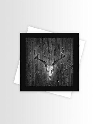 Schwarzwald Postkarte Skull