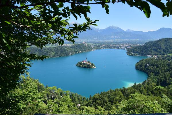 LindiBus Camper Vermietung Schweiz, Flawil, St.Gallen, Camperbus, Reisen, Camperbus, Fernweh, Slowenien, See Blau, Aussicht, Tourismus, Bled