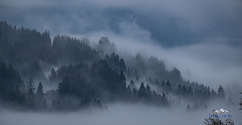 foggy Walsertal