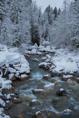 Torrent under snow