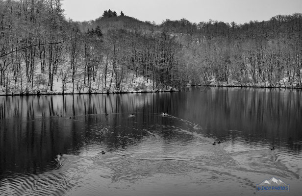 Winter Black and white Lake