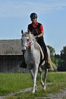 2019, Endurance Festival Bavaria in Buch GER, CEI* 80km mit Pollux - Foto von Barbara Miller