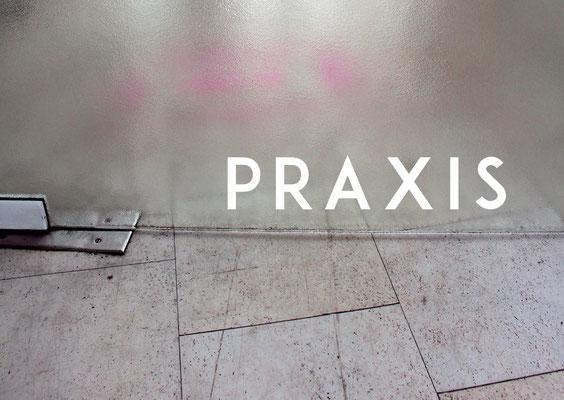 PRAXIS Flyer