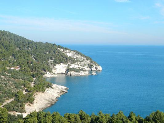 la costa nei pressi di Pugnochiuso