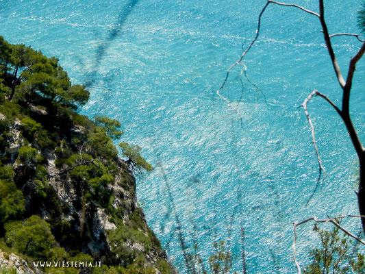 pinete a picco sul mare