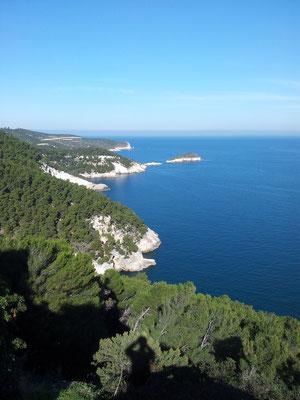 Panorama della costa dalla Torre dell'Aglio