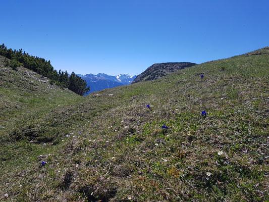 Am Ende des Martinisteig, Blick zum Karwendel