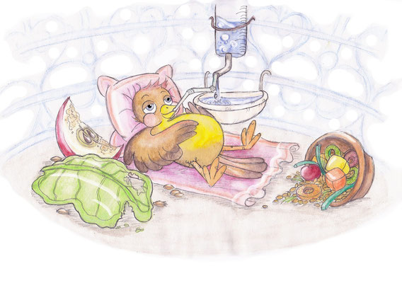 Kleiner Spatz, Kinderbuchillustration