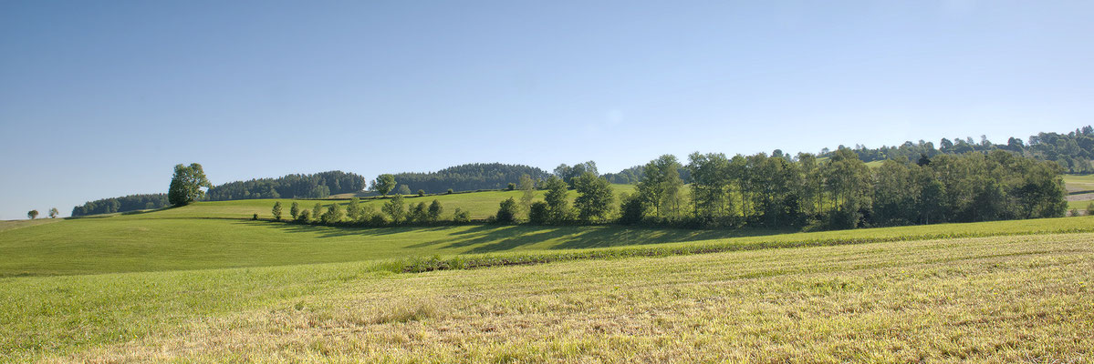 Landschaft bei Mairspindt