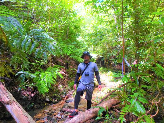 世界自然遺産を目指す地へ