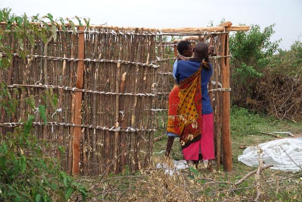 Bei den Massais bauen die Frauen die Häuser