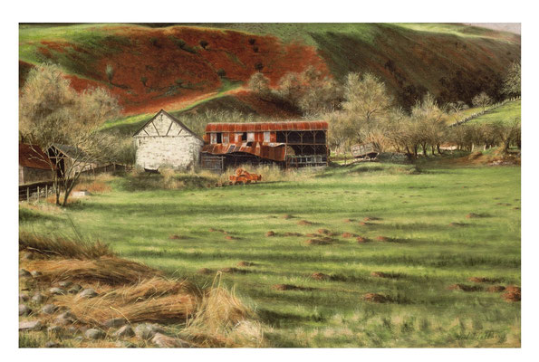 Tin Barn, Welsh Border Country  // oil on canvas
