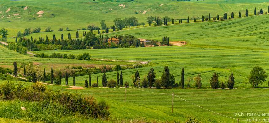 Die Toskana auf dem Weg nach Asciano