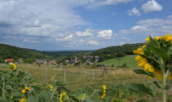 Blick auf Schalkenbach
