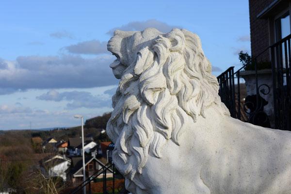 Der Löwe wacht über Schalkenbach