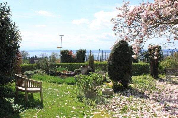 Gartenteich im westlichen Garten mit Sitzgelegenheit und Ausblick auf den See