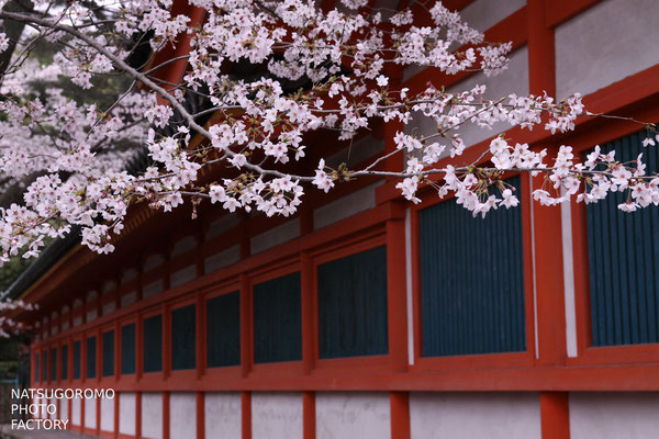 京都、平安神宮 Heian Shrine in Kyoto