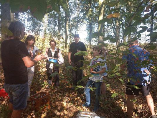 Interessierte Kinder und Erwachsene bei der Nistkastenreinigung 2018 am Pumpenbusch
