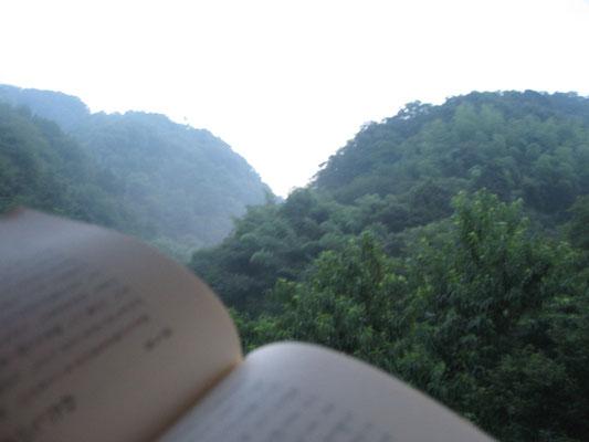 ♡ 日中は暑いので、本を読みながら身体を休めましょう・・・