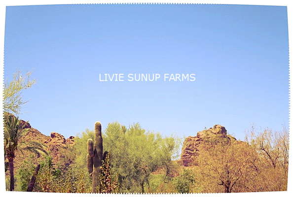 ♡ LIVIE SUNUP FARMS