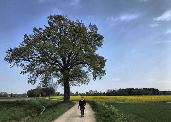 Auf dem Weg nach Altenbeuern