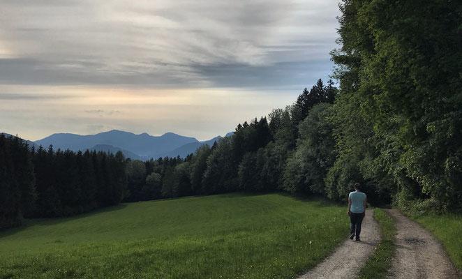 Auf dem Weg zum Sulzberg