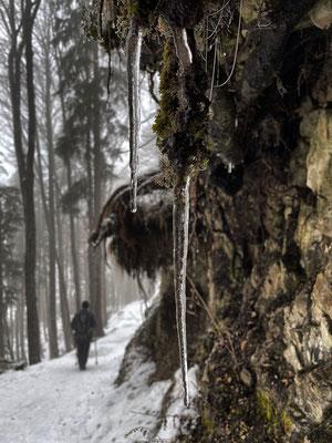 Abstieg durch den Winterwald nach Huben