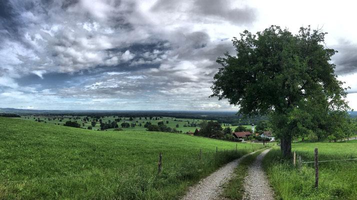 Am Wilhelm-Leibl-Weg über Litzldorf