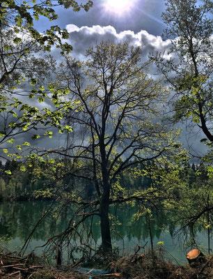 Am Jagdhaussee
