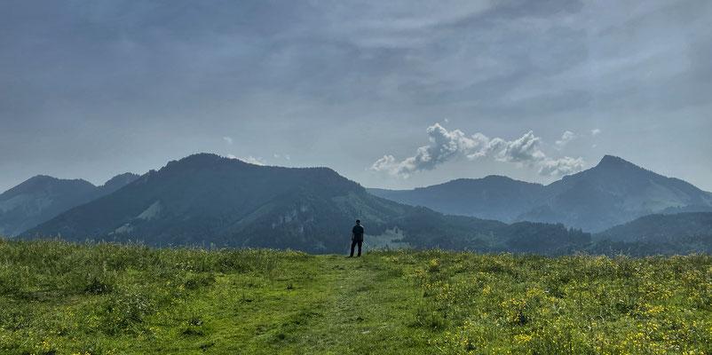 Abstieg zu den Daffnerwald-Almen