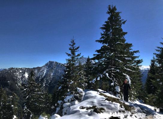Aussicht vom Seebergkopf