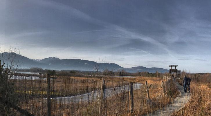Vogelbeobachtungsturm an der Moorstation Nicklheim