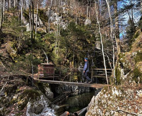 Brücke über den Förchenbach am Tunnelberg