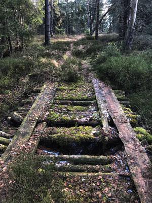 Alte Brücke im Wald der Aisinger Filze