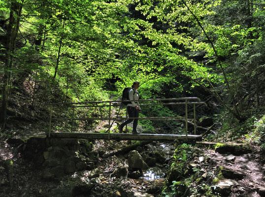 Brücke über den Litzldorfer Bach