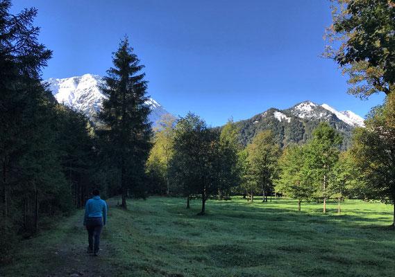 Weg entlang des Alpbachs