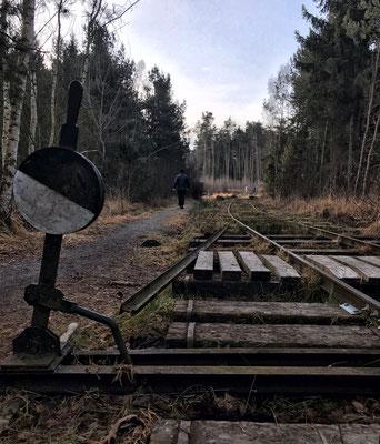 Gleise der Bockerlbahn an der Moorstation Nicklheim