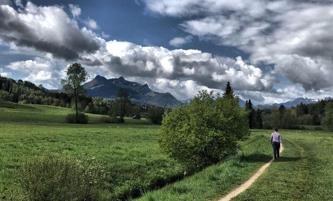 Weg am Steinbach entlang