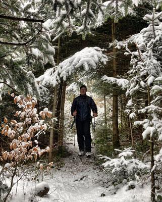 Auf schmalen Pfaden durch den Wald zur Dandlbergalm