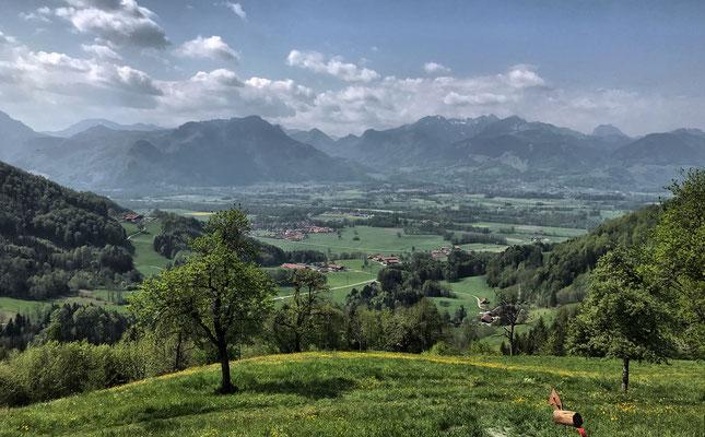 Ausblick von der Dandlberg-Alm