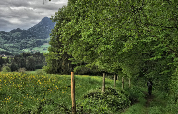 Weg südlich von Geisenkam