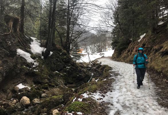 Kurz nach dem Start an der Mailalm am Mühlbach entlang bergab